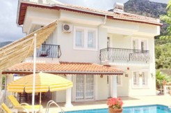 Uzumlu properties for sale (15)