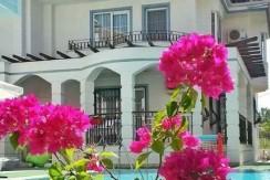 beyaz homes bargain properties calis (13)
