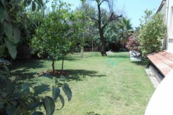 Garden4_resize-595x365