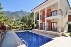 Luxury villa in ovacık for sale (2)