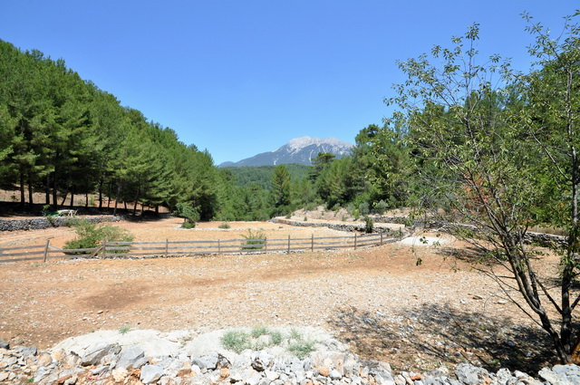 A Large Plot of Land in Uzumlu with Chalet
