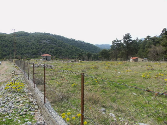 Big Plot of Land Surrounded By The Forest And Mountains in Nif / Uzumlu